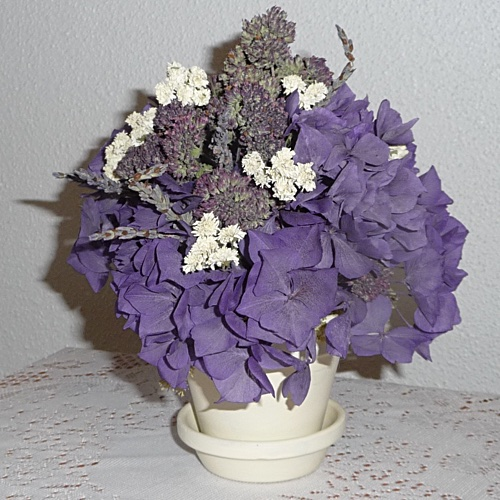 Hydrangea Herb Potted Arrangement